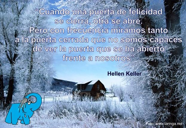 Elefante Azul Avilés La Frase Del Día Frase De Helen