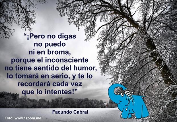 Elefante Azul Avilés La Frase De La Semana Frase De