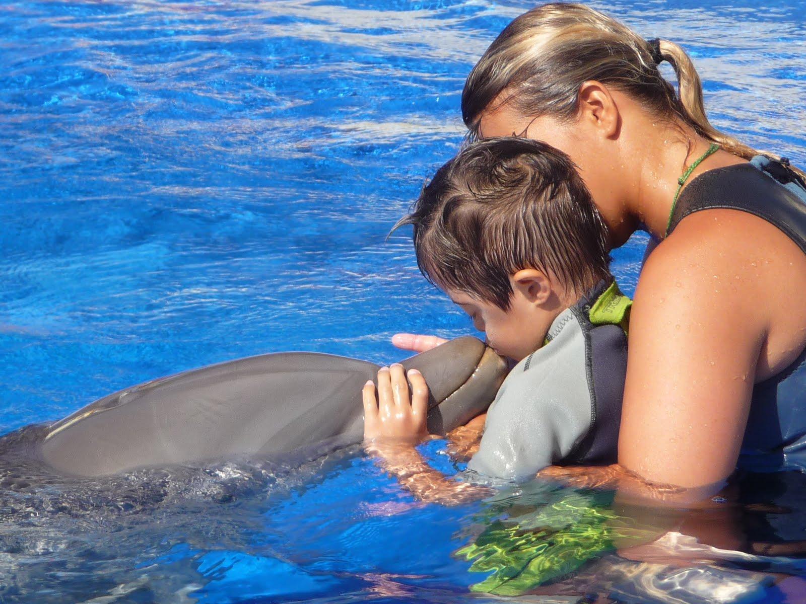 Foto de niño con un delfin en el sitio web de los Centros Elefante Azul de Avilés