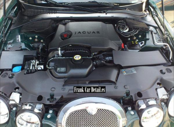 Otra imagen del motor después de prepararlo en Frank Car Detail. Centro de lavado y reacondicionado de coches Elefante Azul de Avilés