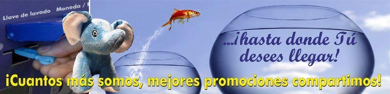 Elefante Azul Aviles -  PROMOCIONES - Centro de lavado de coches Elefante Azul Avilés